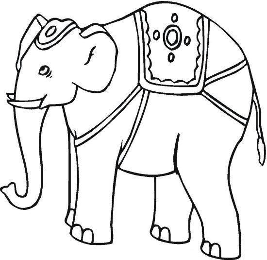coloring pages indian elephant