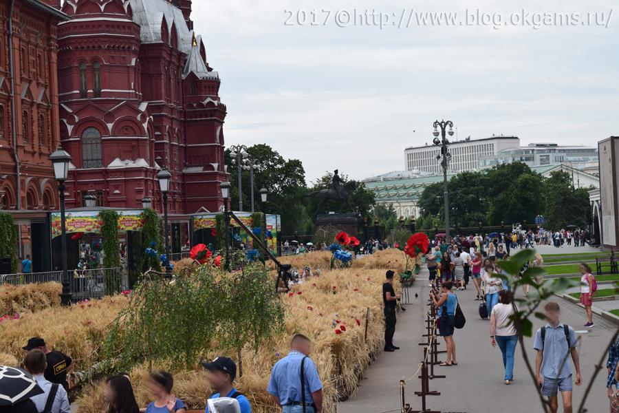 Солома, искусственные маки и васильки в центре Москвы