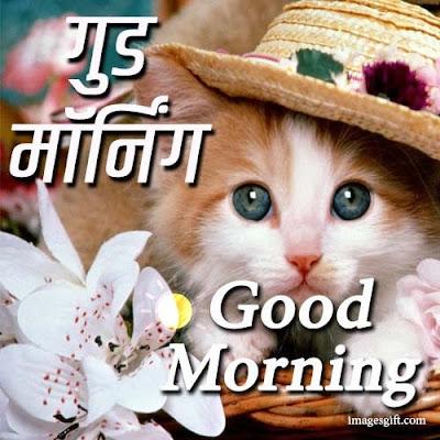 good morning in hindi quotes
