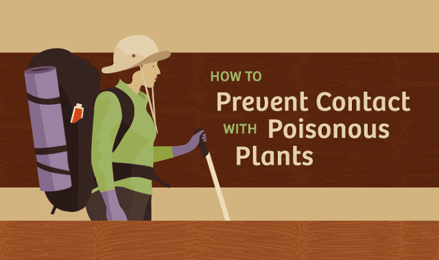 How to Prevent Contact With Poisonous Plants