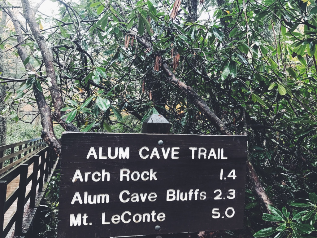 alum cave trail fall