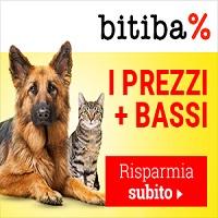 Logo-Bibita
