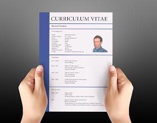 Experiencia laboral en Curriculum vitae