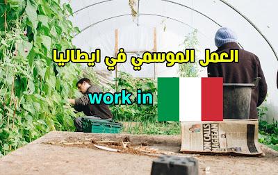 العمل الموسمي في ايطاليا للأجانب