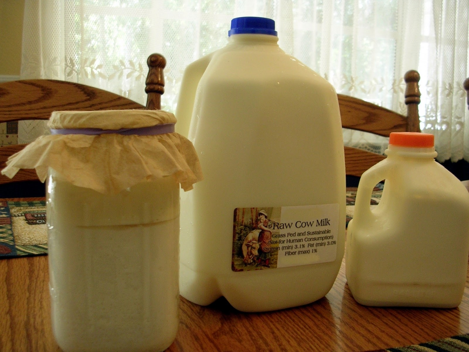 My Week of Drinking Milk Kefir… Decided against It…. Here Is Why!