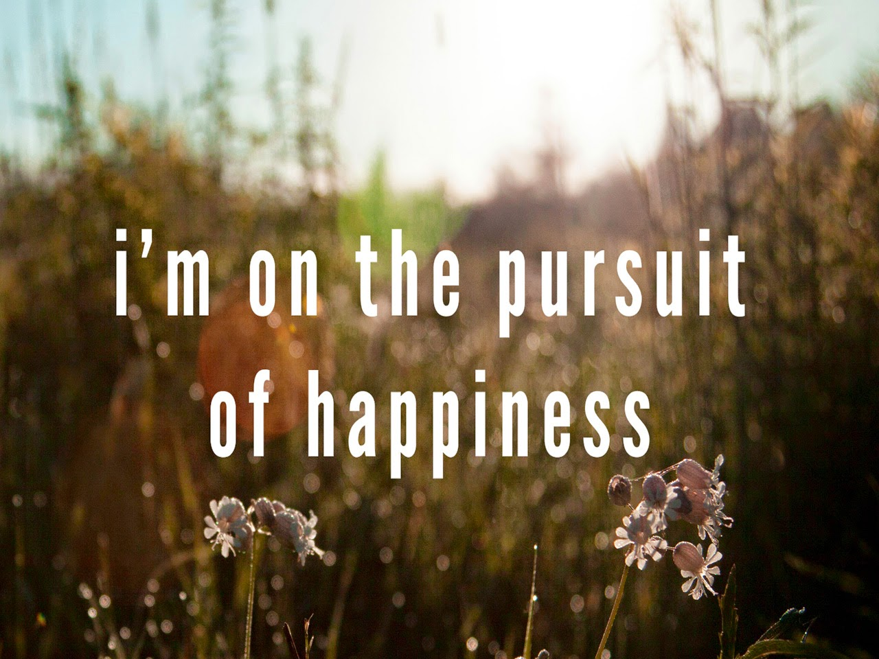 Happiness Quotes: Happiness Quotes And Sayings To Make Happy