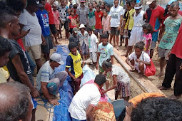Warga Kepulauan Aru Gelar Ritual Adat Kuburkan Paus Sperma Terdampar di Hokmar