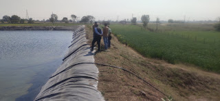 माकड़ोन के किसान विनोद ने किया प्लास्टि लाईनिंग तालाब का निर्माण