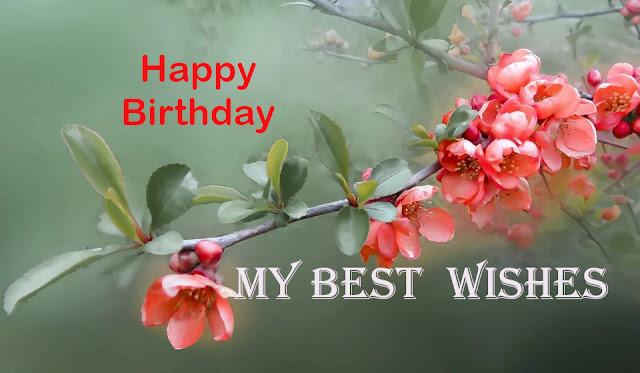 Wish You Happy Birthday Day.