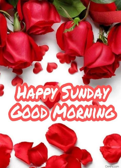 Sunday good morning Special Wish