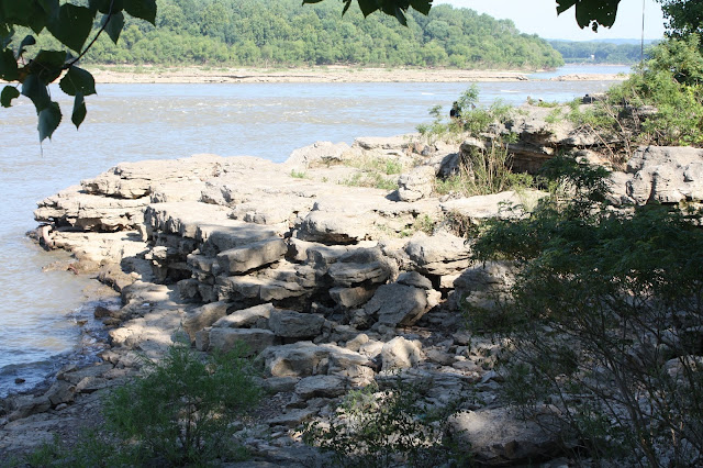 Fossil beds at Falls of the Ohio