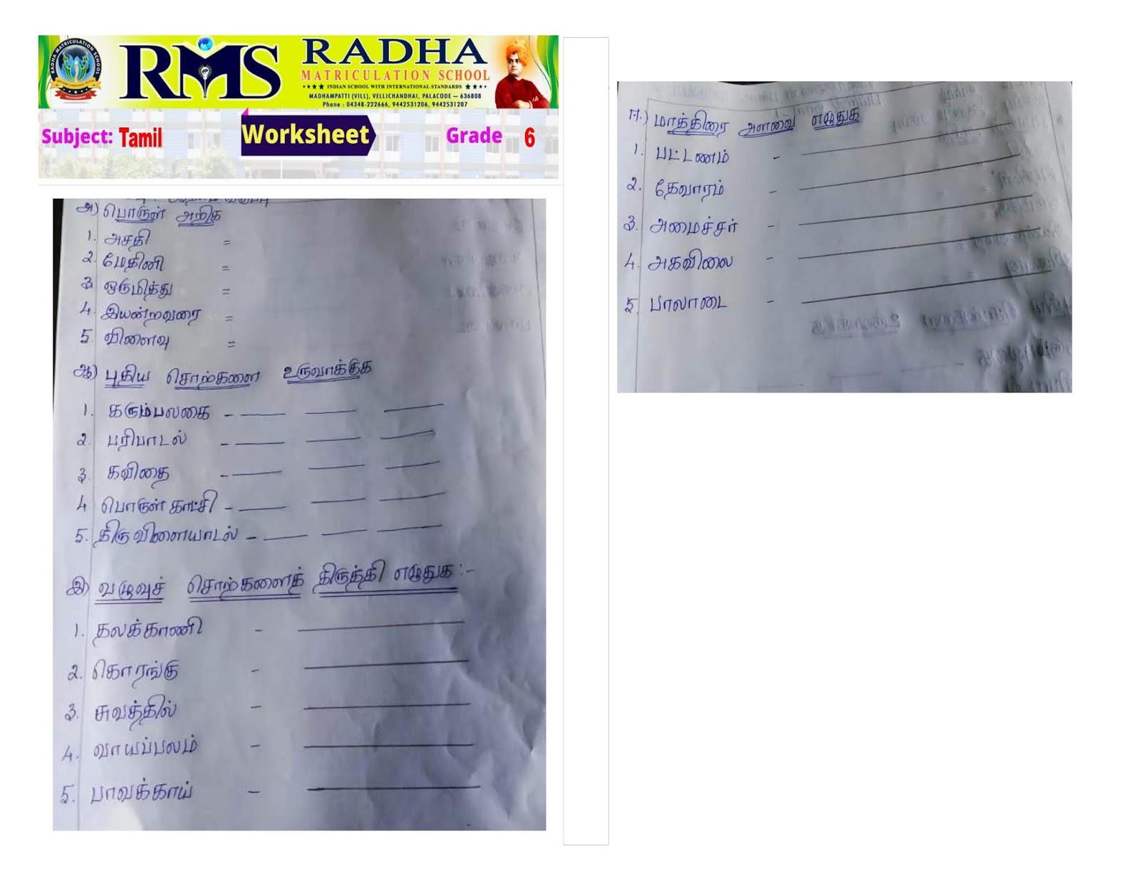 Grade 6 Rms