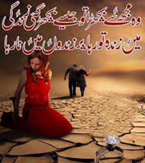 Urdu Shayari For Lover share on facebook