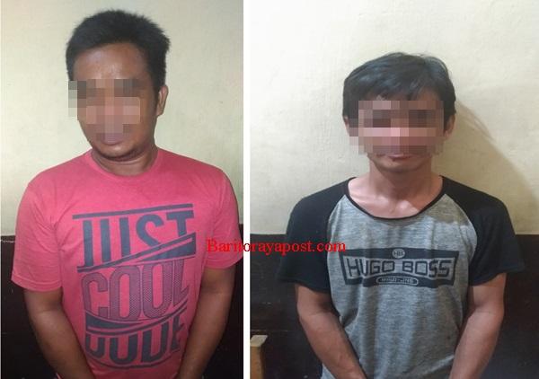 Dua Pelaku Illegal Logging Di Barut Berhasil Ringkus Polisi