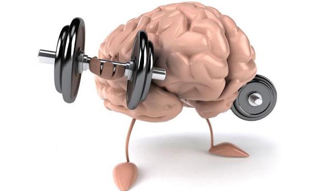 افضل الاكلات الصحيه والمغزيه للعقل لتي تساعد على تنميته