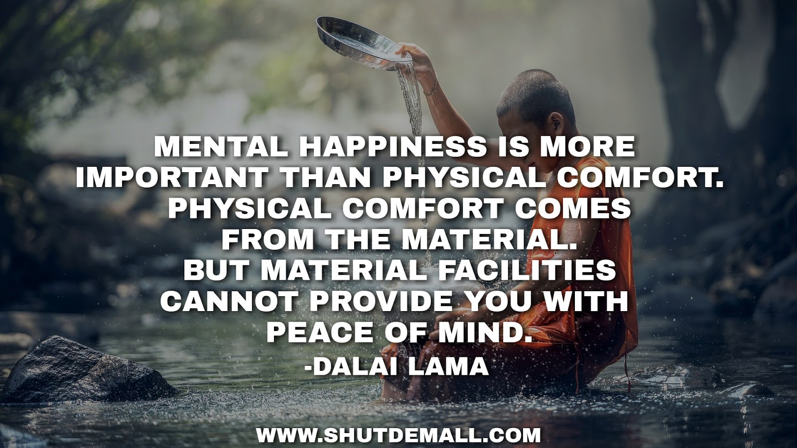 mental-happiness-quote