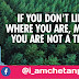 If you not like where you are move forward you are not a tree | @Chetanbro Quotes :- 13