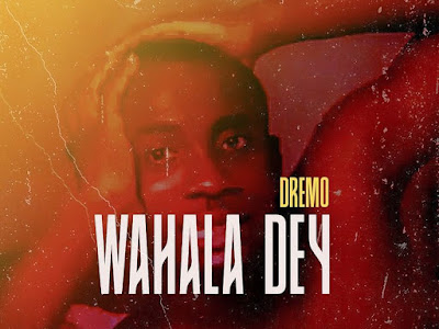 DOWNLOAD MUSIC: Dremo – Wahala Day
