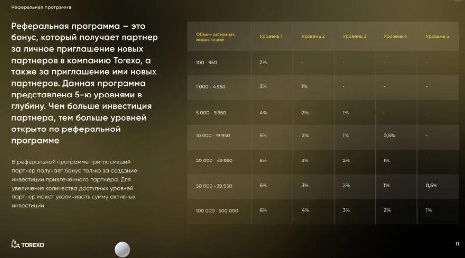 Обзор партнерской программы Torexo