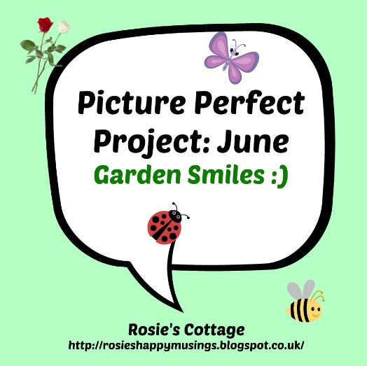 Picture Perfect Project: June: Garden Smiles