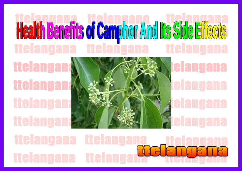 Health Benefits of Camphor And Its Side Effects