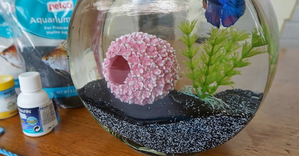 Choosing to keep a Betta fish is a responsibility you ought to take seriously. Having a list of supplies in mind before you even get started is a smart way to ensure you are making the right decisions from the beginning of your Betta's life.