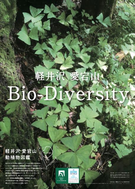 愛宕山動植物図鑑