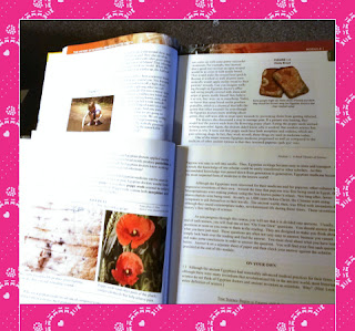 exploring creation with general science text samples