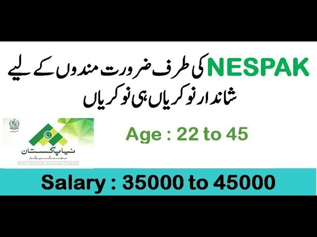 NESPAK Jobs 2019 National Engineering Services Pakistan Jobs 2019