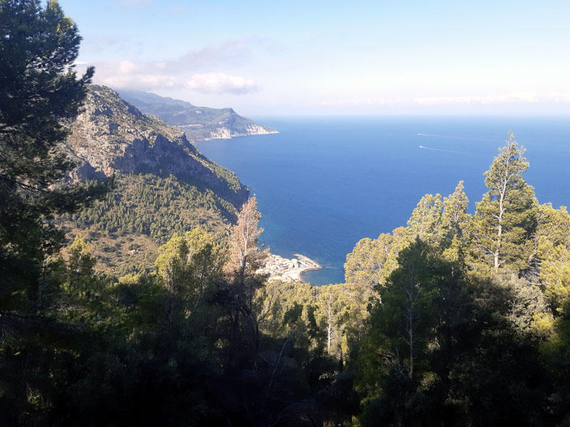Port de Valldemossa - Mallorca