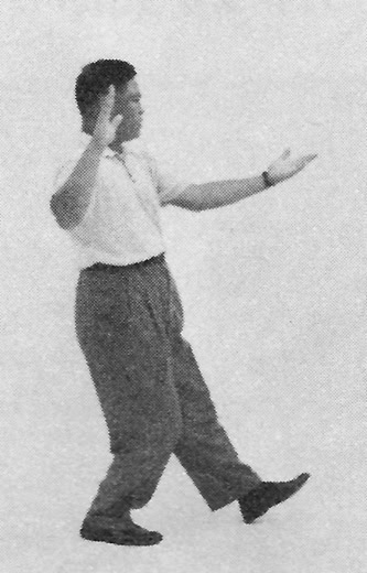 Tai Chi Chuan (Square Form) 38. Pat The Horse High (Left)