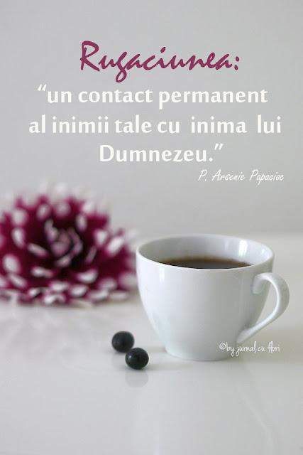 rugaciunea un contact permanent al inimii tale cu inima lui Dumnezeu citat P Arsenie Papacioc