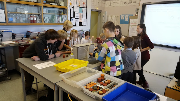 Year 4 Ist Science Work With 9