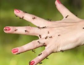 Penyebab Kesemutan Pada Tangan