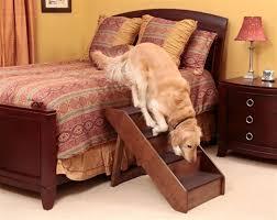 degraus de escadas para cães