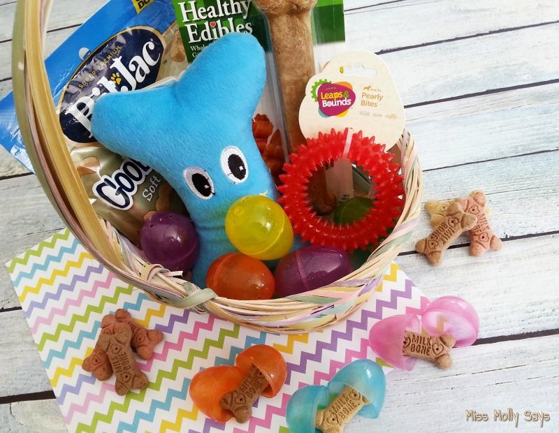 Southern mom loves day 7 diy easter basket for dogs 12daysof easter day 7 diy easter basket for dogs 12daysof easter negle Image collections