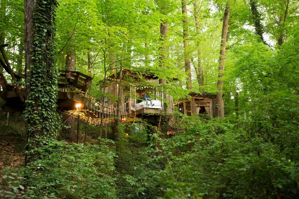 01-Amongst-the-Trees-Architecture-with-Airbnb-Tree-House-Accommodation-www-designstack-co