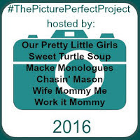 Picture Perfect Project 2016