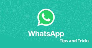 WhatsApp features that will be most useful while you stay or work at home