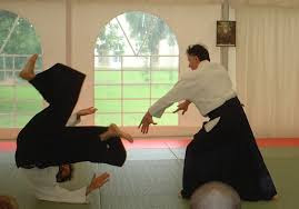 aikido throws
