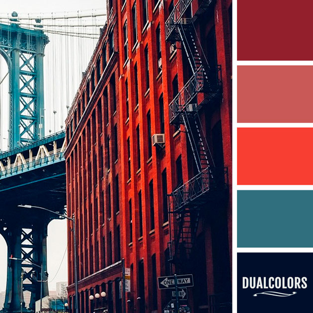 color_paleta_240