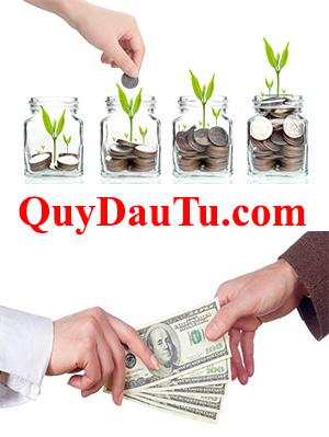 QuyDauTu.com