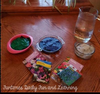 Earth Day Seed Bomb Recipe