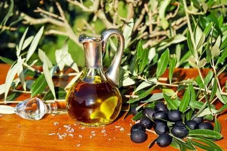 Zaitun Hidroksitirosol Super Antioksidan Ala Mediterania