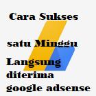Blog saya umur satu minggu, langsung diterima google adsense, begini cara sukses TERBARU