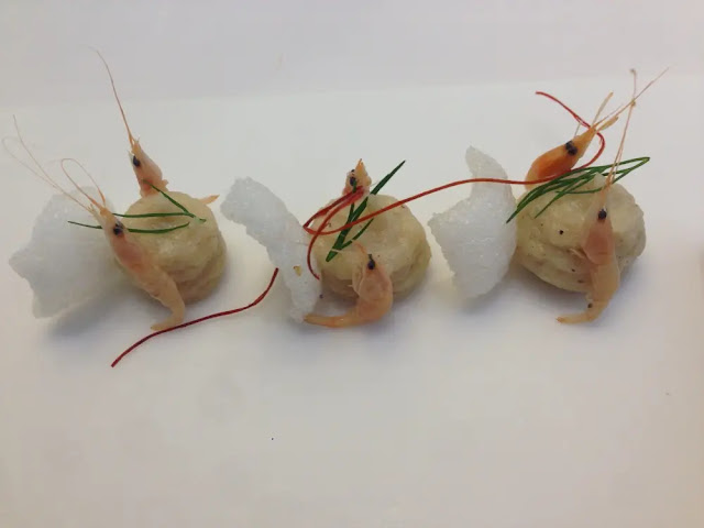 edgier The dish:  Suquet  red shrimp with shrimp and asparagus white Cadiz