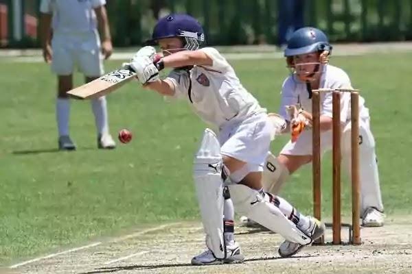 Essay A Cricket Match