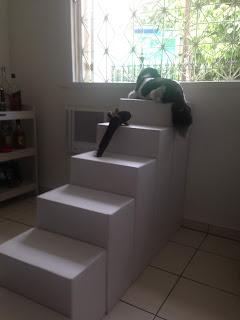 escadas seguras para cães