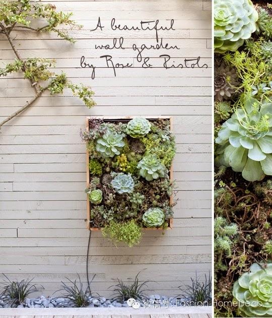 atelier rue verte le blog id es d co des cactus dans la maison. Black Bedroom Furniture Sets. Home Design Ideas