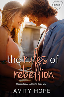 blog tour, romance books, contemporary books, young adult book recommendations, the rules of rebellion